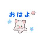 赤ちゃん白猫 毎日使う言葉(個別スタンプ:1)