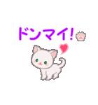 赤ちゃん白猫 毎日使う言葉(個別スタンプ:20)