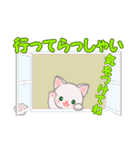赤ちゃん白猫 毎日使う言葉(個別スタンプ:37)