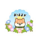しば丸くんの夏(個別スタンプ:01)