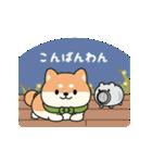 しば丸くんの夏(個別スタンプ:03)