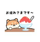 しば丸くんの夏(個別スタンプ:05)