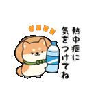 しば丸くんの夏(個別スタンプ:07)