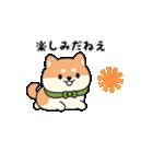 しば丸くんの夏(個別スタンプ:17)