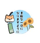 しば丸くんの夏(個別スタンプ:23)