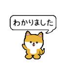 豆いぬ1 (敬語編)(個別スタンプ:01)