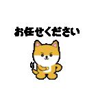 豆いぬ1 (敬語編)(個別スタンプ:04)