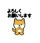 豆いぬ1 (敬語編)(個別スタンプ:07)