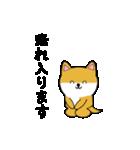 豆いぬ1 (敬語編)(個別スタンプ:09)