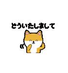 豆いぬ1 (敬語編)(個別スタンプ:11)