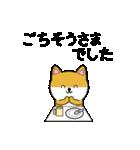豆いぬ1 (敬語編)(個別スタンプ:12)