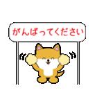 豆いぬ1 (敬語編)(個別スタンプ:27)
