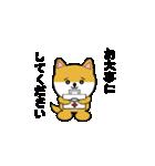 豆いぬ1 (敬語編)(個別スタンプ:32)