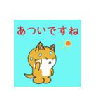 豆いぬ1 (敬語編)(個別スタンプ:33)