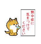 豆いぬ1 (敬語編)(個別スタンプ:34)