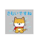 豆いぬ1 (敬語編)(個別スタンプ:35)