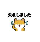 豆いぬ1 (敬語編)(個別スタンプ:38)