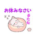 赤ちゃん白猫 毎日優しいスタンプ(個別スタンプ:4)