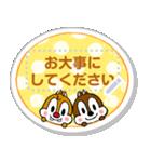 【メモスタンプ】チップとデール(個別スタンプ:12)