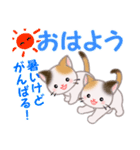 三毛猫ツインズ 夏~!(個別スタンプ:2)