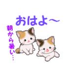 三毛猫ツインズ 夏~!(個別スタンプ:3)