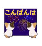 三毛猫ツインズ 夏~!(個別スタンプ:5)