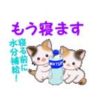三毛猫ツインズ 夏~!(個別スタンプ:6)