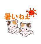 三毛猫ツインズ 夏~!(個別スタンプ:10)