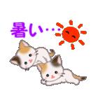 三毛猫ツインズ 夏~!(個別スタンプ:11)