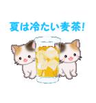 三毛猫ツインズ 夏~!(個別スタンプ:17)