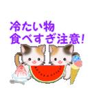 三毛猫ツインズ 夏~!(個別スタンプ:18)