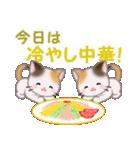 三毛猫ツインズ 夏~!(個別スタンプ:19)