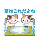 三毛猫ツインズ 夏~!(個別スタンプ:20)