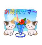 三毛猫ツインズ 夏~!(個別スタンプ:21)