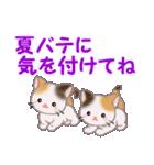 三毛猫ツインズ 夏~!(個別スタンプ:30)