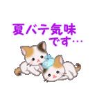 三毛猫ツインズ 夏~!(個別スタンプ:31)