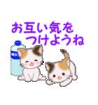 三毛猫ツインズ 夏~!(個別スタンプ:32)