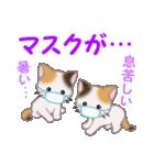 三毛猫ツインズ 夏~!(個別スタンプ:34)