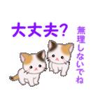 三毛猫ツインズ 夏~!(個別スタンプ:35)