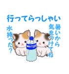 三毛猫ツインズ 夏~!(個別スタンプ:37)
