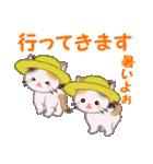 三毛猫ツインズ 夏~!(個別スタンプ:38)