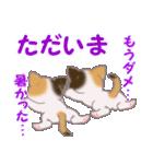 三毛猫ツインズ 夏~!(個別スタンプ:39)