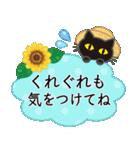 【涼感】黒ねこ×夏の気づかい(個別スタンプ:24)