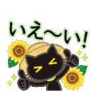 【涼感】黒ねこ×夏の気づかい(個別スタンプ:25)