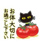 【涼感】黒ねこ×夏の気づかい(個別スタンプ:34)