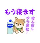 よちよち豆柴 優しい夏(個別スタンプ:6)