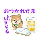 よちよち豆柴 優しい夏(個別スタンプ:11)