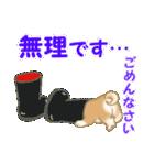 よちよち豆柴 優しい夏(個別スタンプ:16)