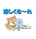 よちよち豆柴 優しい夏(個別スタンプ:19)