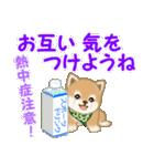 よちよち豆柴 優しい夏(個別スタンプ:22)